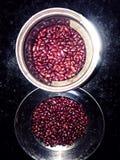 Rote Gartenbohnen mit Restlichtdetails stockfotos
