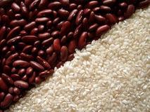Rote Gartenbohnen und weißer Reis Stockbild