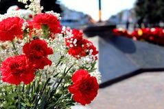 Rote Gartennelken auf dem Hintergrund des ewigen Feuers zu Ehren des Tages des Sieges Stockfoto