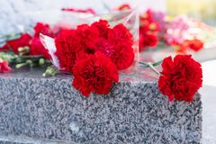 Rote Gartennelkenblumen am Denkmal zu gefallenen Soldaten im Zweiten Weltkrieg stockfotos