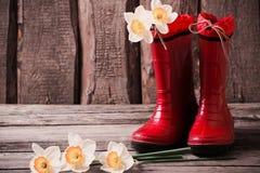 Rote Gartenschuhe mit Frühlingsblumen Stockfotos