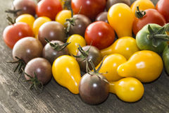 Rote, gelbe, braune, grüne Tomaten Lizenzfreies Stockfoto