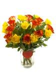 Rote gelbe Rosen Stockbild