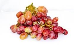 Rote gelbe Trauben lokalisiert stockbild