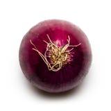 Rote Gemüsezwiebel Lizenzfreies Stockfoto