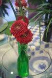 Rote Gerberablumen in einer grünen Flasche Lizenzfreies Stockfoto