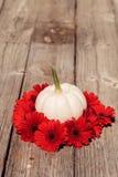 Rote Gerberagänseblümchen schellen einen geschnitzten weißen Casper-Kürbis Stockfotografie