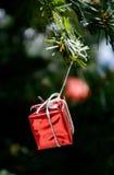Rote Geschenkbox, die am Weihnachtsbaum hängt Lizenzfreie Stockfotografie