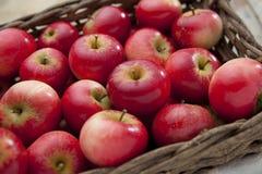 Rote glänzende Äpfel Stockfotos