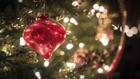 Rote Glasverzierung auf Weihnachtsbaum Stockfotografie