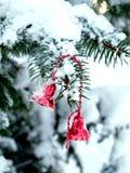 Rote Glocken auf einer schneebedeckten Niederlassung einer Fichte Stockfotos