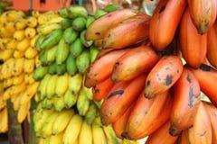 Rote, grüne und gelbe Bananen Stockbild
