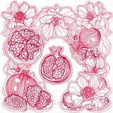 Rote Granatäpfel und Blumen der Verzierung Lizenzfreies Stockfoto