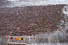 Rote Häuser bei Larung Gar Buddhist Academy Stockfotografie