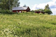 Rote Häuser in Norrbotten Stockbilder