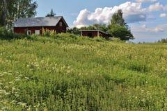 Rote Häuser in Norrbotten Lizenzfreies Stockbild