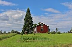 Rote Häuser in Norrbotten Stockbild