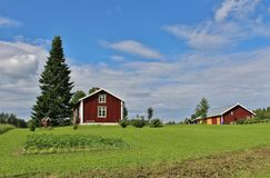 Rote Häuser in Norrbotten Lizenzfreie Stockbilder
