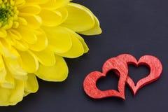 Rote Herzen und eine Chrysantheme Stockfotografie