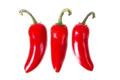 3 rote Jalapenos, Peperoni Stockfotos