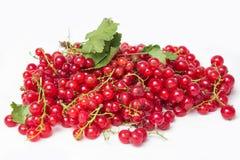Rote Johannisbeer- und Grünblattstillleben lokalisiert auf weißem Hintergrund Stockbild
