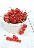 Rote Johannisbeere auf einem weißen Hintergrund Stockfotos