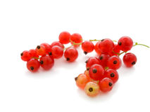 Rote Johannisbeere auf weißem Hintergrund Lizenzfreies Stockfoto