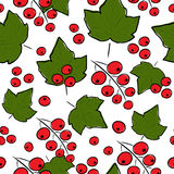 Rote Johannisbeere nahtlos Stockfotografie