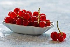 Rote Johannisbeere trägt rustikales Stillleben Früchte stockfotos