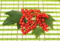 Rote Johannisbeere und Blätter Lizenzfreie Stockbilder