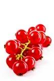 Rote Johannisbeeren auf einem weißen Hintergrund Stockbilder