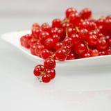 Rote Johannisbeeren auf einer weißen Platte Stockfotos