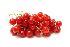 Rote Johannisbeeren auf Weiß Lizenzfreies Stockfoto