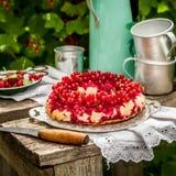 Rote Johannisbeereumgedrehter Bundt-Kuchen stockbilder