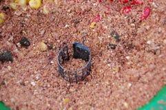Rote Körner von Mais in eingesperrte Zufuhren Stockbild