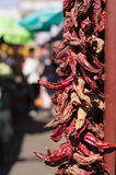 Rote kühle Pfeffer Lizenzfreie Stockfotografie