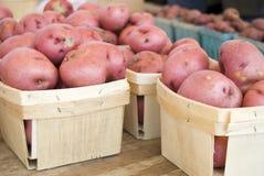 Rote Kartoffeln Stockbild