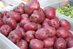 Rote Kartoffeln lizenzfreies stockfoto