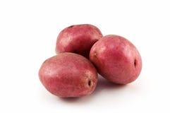 Rote Kartoffeln Stockfotos