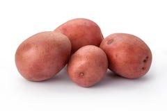 Rote Kartoffeln lokalisiert Stockbilder