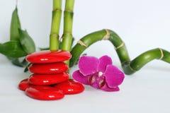 Rote Kiesel vereinbarten im Zenlebensstil mit die dunklen rosa Orchideen auf der rechten Seite des Bambusgeraden und verdreht das lizenzfreie stockfotografie
