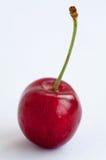 Rote Kirsche auf einem weißen Hintergrund Stockfotos