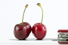 Rote Kirschen Stockfoto