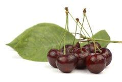 Rote Kirschen und grüne Blätter Stockfotos