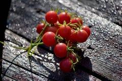 Rote Kirschtomatengruppe Stockfotografie