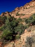 Rote Klippen - Hurrikan Utah Stockbild