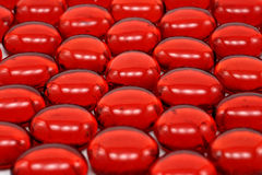 Rote Korne in einem bestellten Muster Lizenzfreies Stockbild