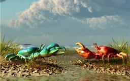Rote Krabbe gegen blaue Krabbe lizenzfreie abbildung