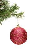 Rote Kugel, die an einem Weihnachtsbaumzweig hängt Stockbild