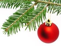 Rote Kugel, die vom Weihnachtsbaum hängt Lizenzfreies Stockfoto
